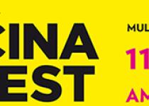 Vysočina Fest – třídenní multižánrový festival