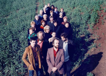 Theo Hakola, Please the Trees se sborem Elpida a The Brownies během festivalu 4+4 dny v pohybu